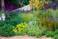 zahrady 1