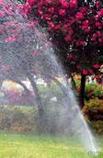 zahrady 3